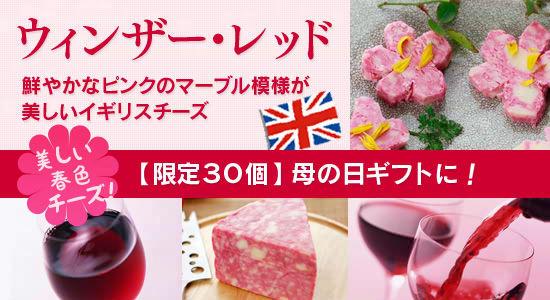美しい春色チーズ!【限定30個】母の日ギフトに!イギリスチーズウィンザー・レッドWinsor Red